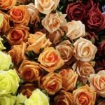 Penové ruže